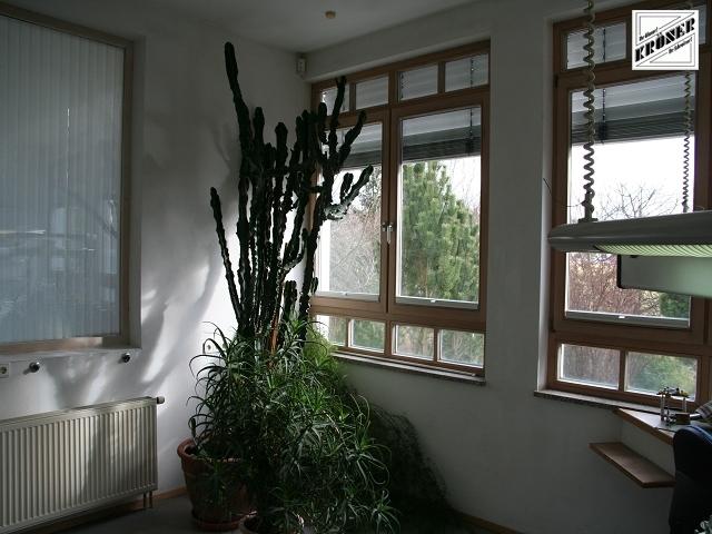 Sie sehen Bilder aus dem Artikel: Fenster / Glasfassaden